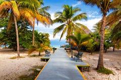 热带海滩Varadero在古巴 免版税库存照片