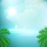 热带海看法在下棕榈树之间的 库存照片