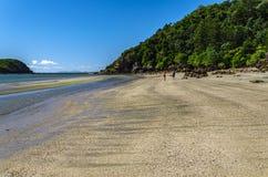 热带海角希尔斯伯勒角国家公园 免版税库存图片