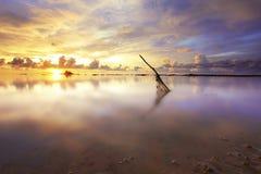 热带海运的日落 库存图片