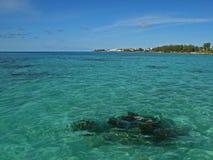 热带海,有一块可看见的礁石的 库存照片