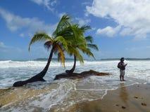 热带海滩和吉他演奏员 免版税库存照片