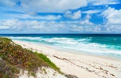 热带海滩和海运 库存照片