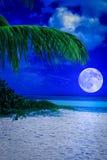 热带海滩在与满月的晚上 库存照片