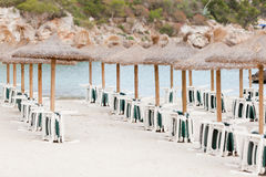 热带海滩在夏令时游人假日 免版税库存照片