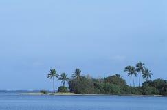 热带海滩在多巴哥 库存照片