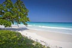 热带海滩在普吉岛,泰国 图库摄影
