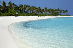 热带海滩在马尔代夫 免版税图库摄影