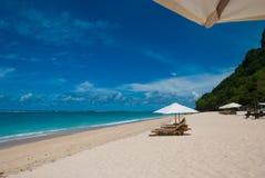 热带海滩在巴厘岛 库存图片