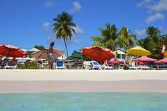 热带海滩在巴巴多斯,加勒比 库存图片