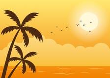 热带海滩夏天日落场面 免版税库存照片