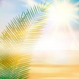 热带海滩夏天模板 免版税图库摄影