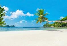 热带海滩有小船的, Mahe海岛,塞舌尔群岛白鹅Lazare 免版税库存照片
