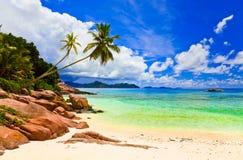 热带海滩的掌上型计算机 图库摄影