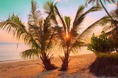 热带海滩的日落 泰国,酸值苏梅岛 图库摄影
