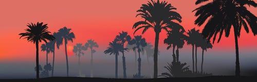 热带海滩的日落 库存例证