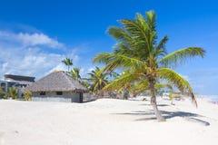 热带海滩的棕榈叶屋顶平房 免版税库存照片