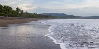 热带海滩的横向 图库摄影