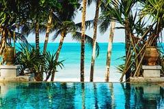 热带海滩的池 库存照片