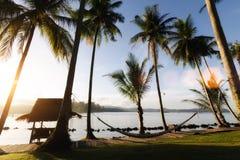 热带海滩看法与可可椰子树、小屋和摇篮的在 免版税图库摄影