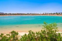 热带海滩风景在有棕榈树的埃及盐水湖 免版税库存图片