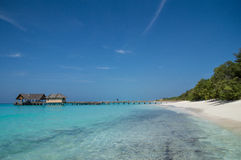 热带海滩-马尔代夫 免版税库存图片
