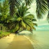 热带海滩,葡萄酒样式 库存照片