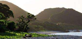 热带海滩 免版税图库摄影