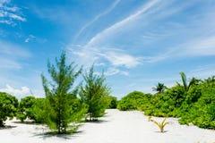 热带海滩- Feydhoofinolhu 免版税库存照片