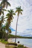 热带海滩ladscape 免版税库存图片