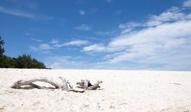 热带海滩Paradaise海岛竹海岛,普吉岛泰国 免版税库存图片