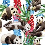 热带混合竹树和熊猫样式在水彩样式 库存照片