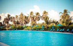 热带游泳池 免版税库存照片