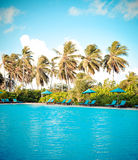 热带游泳池 库存照片