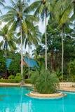 热带游泳池 免版税图库摄影