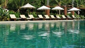 热带游泳 免版税库存图片