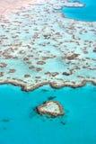 热带澳洲的礁石 免版税图库摄影