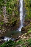 热带瀑布在哥斯达黎加 库存图片