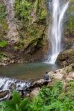 热带瀑布在哥斯达黎加 免版税库存图片