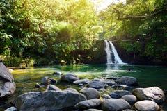 热带瀑布更低的Waikamoi秋天和一个小透明的池塘,在一片密集的热带雨林里面,路韩的 免版税库存图片