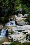 热带瀑布通过森林密林金马仑高原马来西亚 免版税库存照片