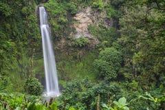热带瀑布 免版税库存照片