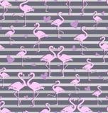 热带火鸟群  无缝的模式 皇族释放例证