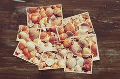 热带照片拼贴画顶视图在木背景的 免版税库存照片