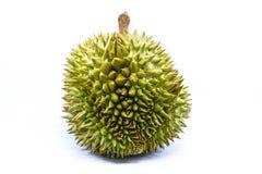 热带留连果果子查出的照片 免版税图库摄影