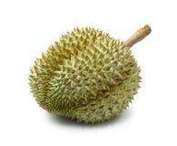 热带留连果果子查出的照片 免版税库存照片