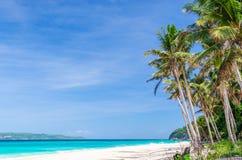 热带白色海滩视图和棕榈树与绿松石海 库存照片