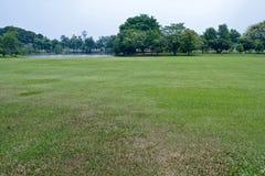 热带的公园 免版税库存照片