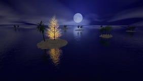 热带的圣诞节 图库摄影