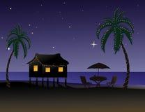 热带的圣诞节 免版税图库摄影
